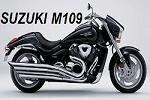 Atlas Plating Suzuki M109 and similar bikes price list
